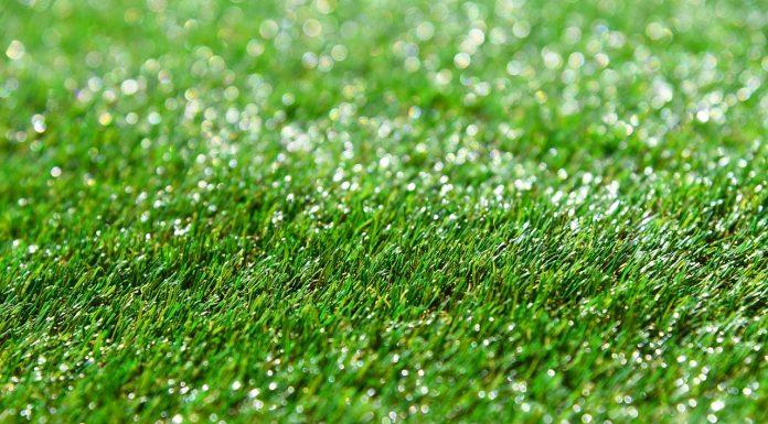 התקנת דשא סינטטי בעצמכם